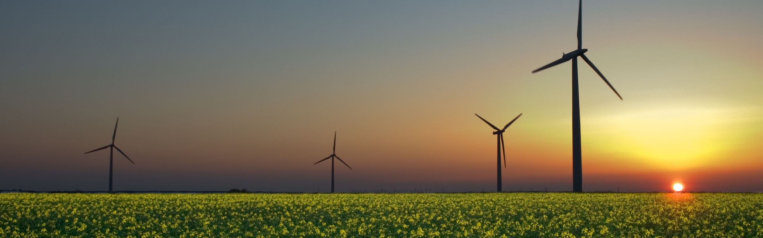 Energy and Climate News Weekly